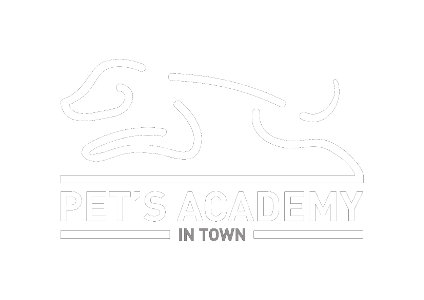 Pets Academy In Town